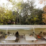 Architectes espagnols dans la forêt
