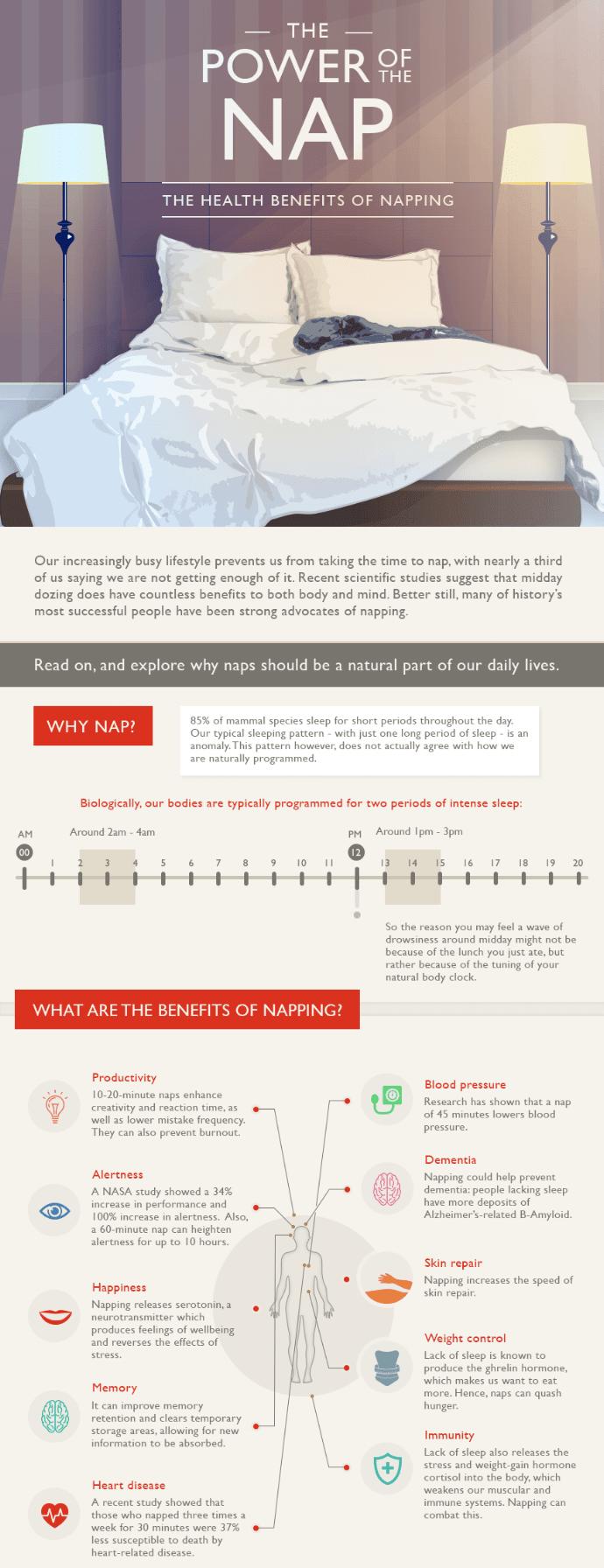Infographie sur la sieste
