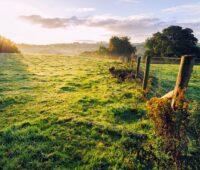 Quitter la ville pour vivre à la campagne ?