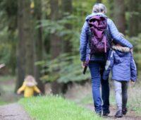 Quitter la ville - promenade en forêt